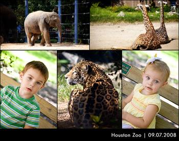 Zooblogboad