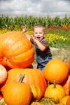 Pumpkin_img_9846