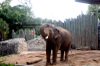 Zoo_img_0263